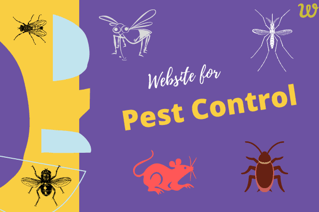 pest control service website